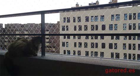 Redes para balcones, ventanas y terrazas | Gatored