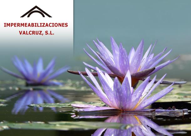 Impermeabilizaciones Valcruz, venta de EPDM para estanques.