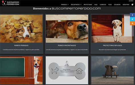 Web para búsqueda de perros perdidos